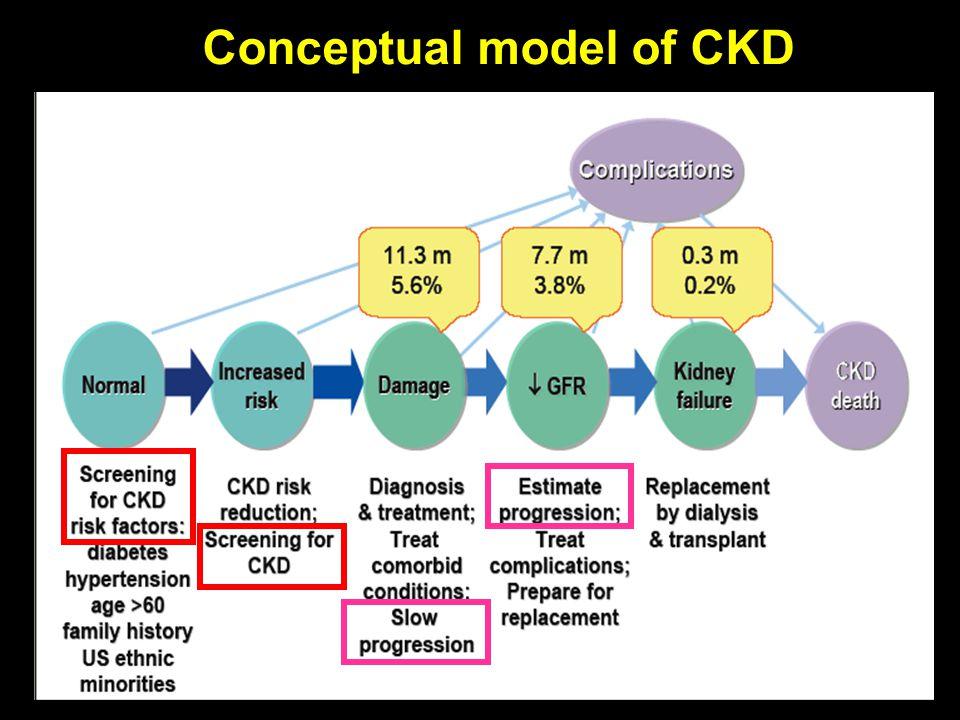 Conceptual model of CKD