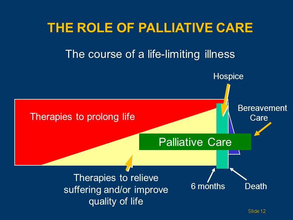 THE ROLE OF PALLIATIVE CARE Palliative Care Therapies to prolong life Hospice Therapies to relieve suffering and/or improve quality of life Bereavement Care 6 monthsDeath The course of a life-limiting illness Slide 12