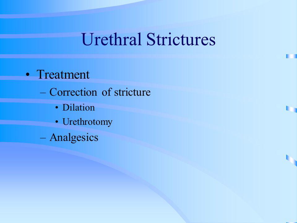 Urethral Strictures Treatment –Correction of stricture Dilation Urethrotomy –Analgesics