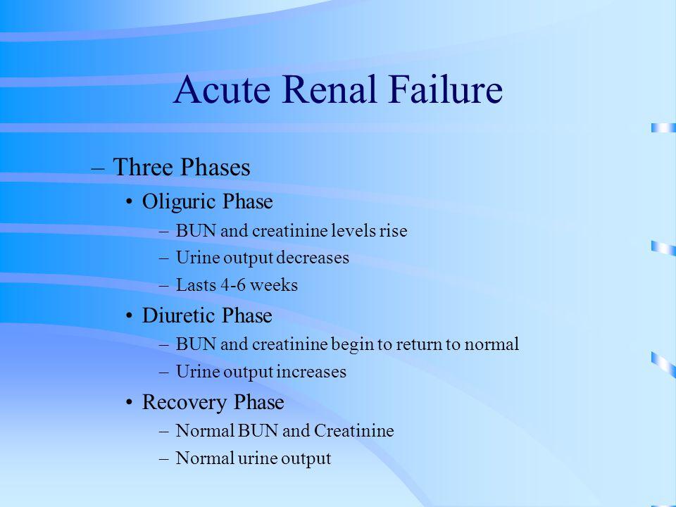 Acute Renal Failure –Three Phases Oliguric Phase –BUN and creatinine levels rise –Urine output decreases –Lasts 4-6 weeks Diuretic Phase –BUN and crea