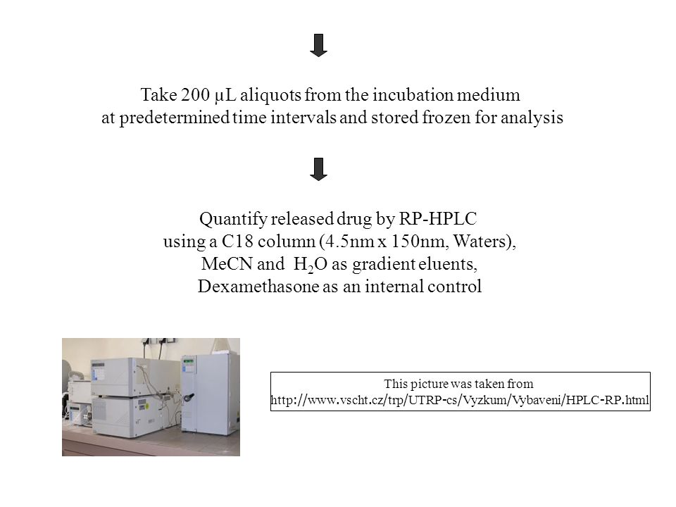 Take 200 µL aliquots from the incubation medium at predetermined time intervals and stored frozen for analysis Quantify released drug by RP-HPLC using