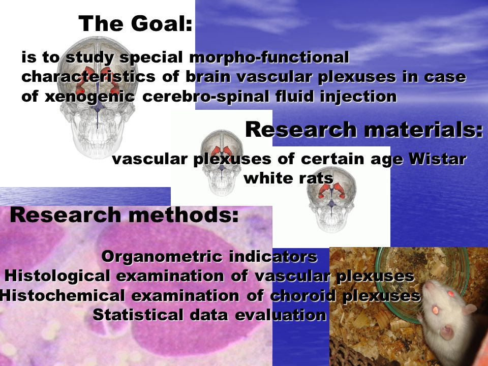 The Goal: is to study special morpho-functional characteristics of brain vascular plexuses in case of xenogenic cerebro-spinal fluid injection Research materials: vascular plexuses of certain age Wistar white rats Research methods: Organometric indicators Histological examination of vascular plexuses Histochemical examination of choroid plexuses Statistical data evaluation