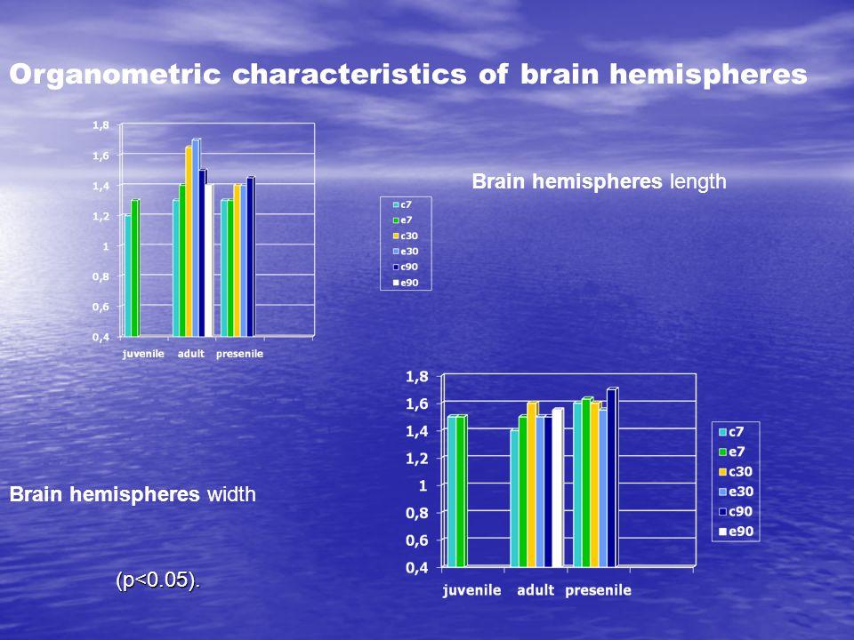 Brain hemispheres length Brain hemispheres width Organometric characteristics of brain hemispheres (p<0.05).