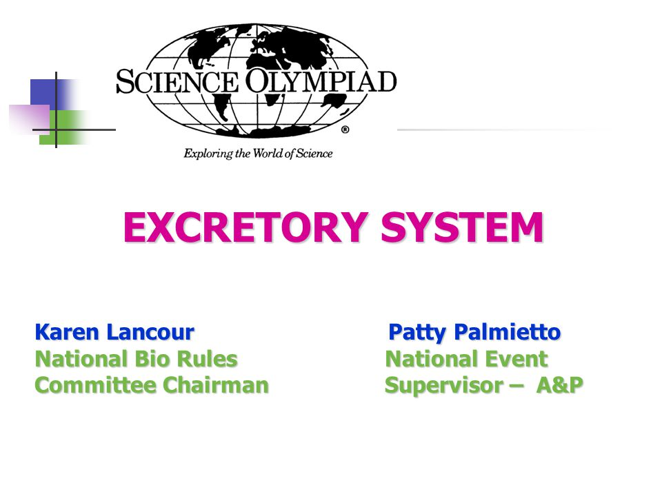 EXCRETORY SYSTEM EXCRETORY SYSTEM Karen Lancour Patty Palmietto National Bio Rules National Event Committee Chairman Supervisor – A&P