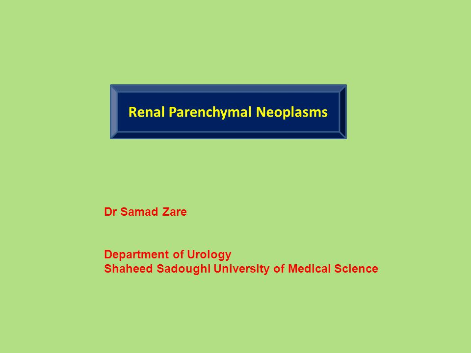 Renal Parenchymal Neoplasms Dr Samad Zare Department of Urology Shaheed Sadoughi University of Medical Science