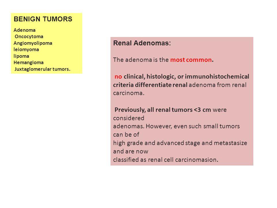 BENIGN TUMORS Adenoma Oncocytoma Angiomyolipoma leiomyoma lipoma Hemangioma Juxtaglomerular tumors.