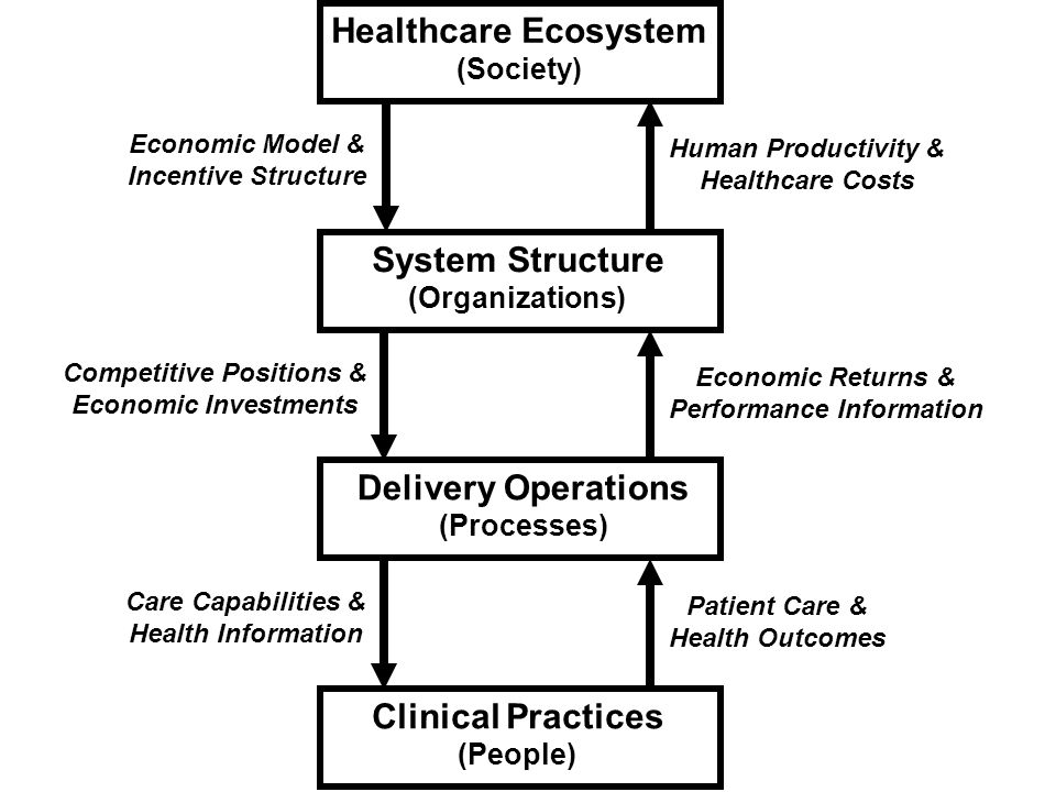 Knowledge and Skills for Enterprise Transformation.50 Clinical Practices (People) Economic Model & Incentive Structure Healthcare Ecosystem (Society) Human Productivity & Healthcare Costs Delivery Operations (Processes) Patient Care & Health Outcomes Care Capabilities & Health Information System Structure (Organizations) Economic Returns & Performance Information Competitive Positions & Economic Investments