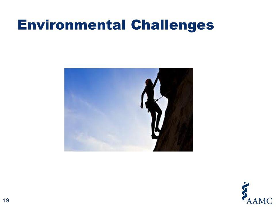 Environmental Challenges 19