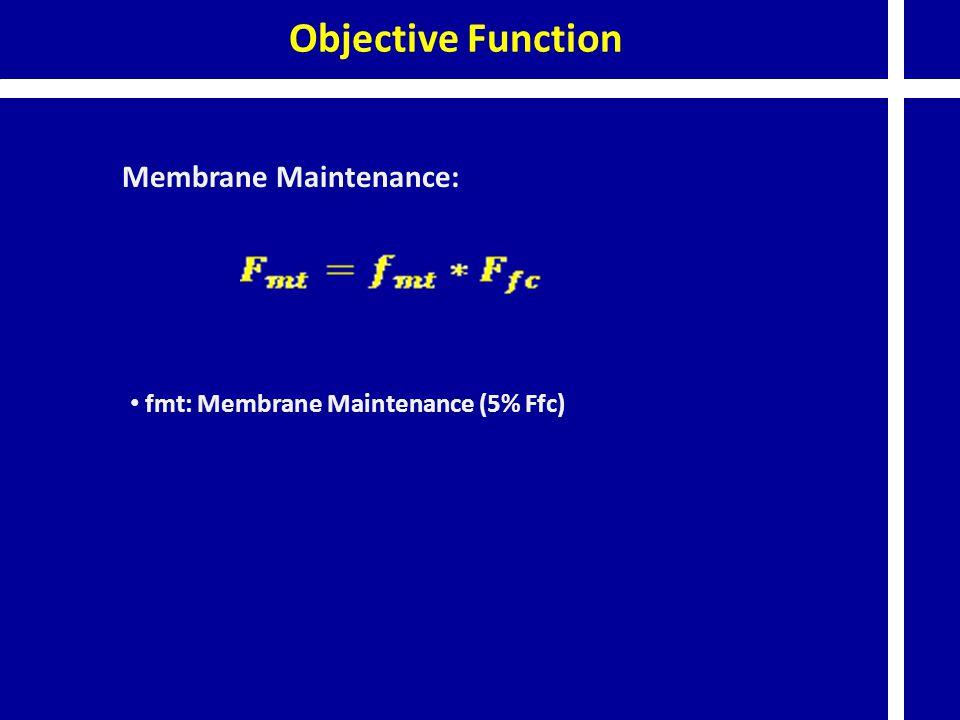 Objective Function Membrane Maintenance: fmt: Membrane Maintenance (5% Ffc)