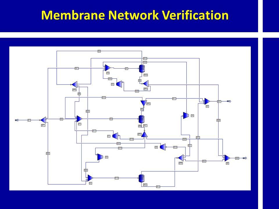 Membrane Network Verification