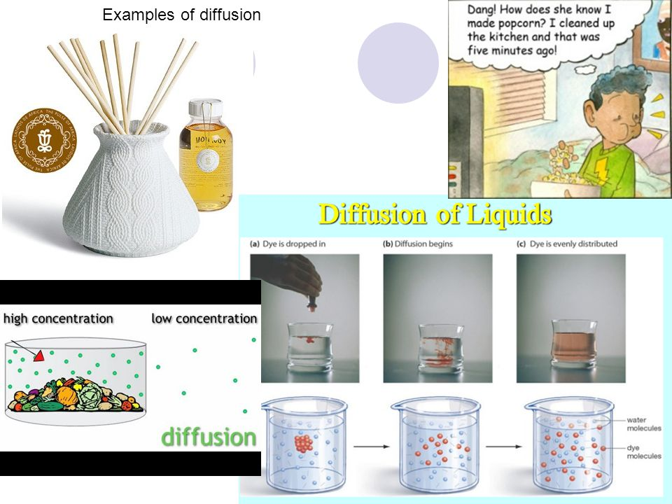 Examples of diffusion