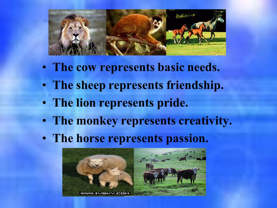 The cow represents basic needs. The sheep represents friendship. The lion represents pride. The monkey represents creativity. The horse represents pas