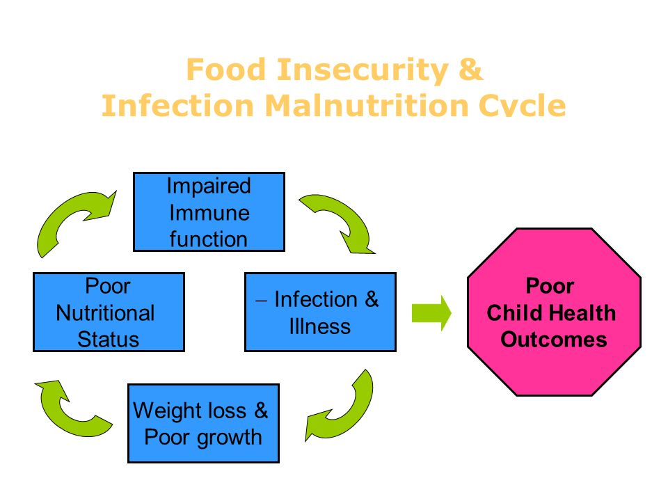 Food Insecurity & Infection Malnutrition Cycle Poor Nutritional Status Weight loss & Poor growth Impaired Immune function  Infection & Illness Poor C