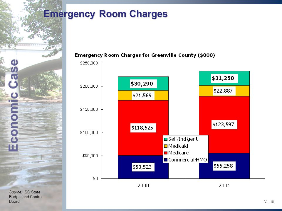 Economic Case VI - 16 Emergency Room Charges Source: SC State Budget and Control Board