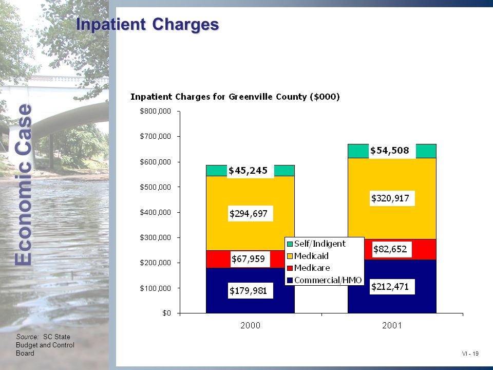 Economic Case VI - 19 Inpatient Charges Source: SC State Budget and Control Board