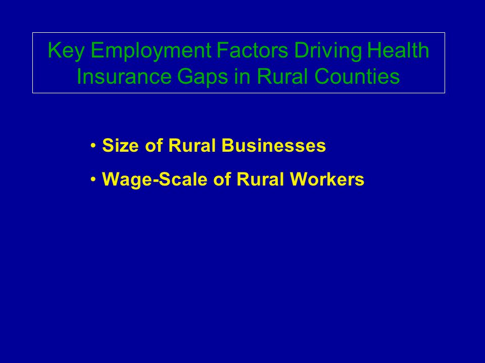 Key Employment Factors Driving Health Insurance Gaps in Rural Counties Size of Rural Businesses Wage-Scale of Rural Workers