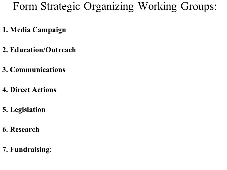 Form Strategic Organizing Working Groups: 1. Media Campaign 2. Education/Outreach 3. Communications 4. Direct Actions 5. Legislation 6. Research 7. Fu