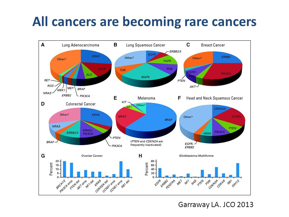 All cancers are becoming rare cancers Garraway LA. JCO 2013