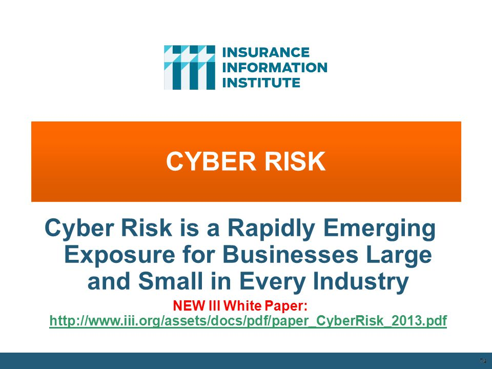 CYBER RISK 74 Cyber Risk is a Rapidly Emerging Exposure for Businesses Large and Small in Every Industry NEW III White Paper: http://www.iii.org/asset
