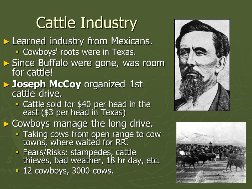 Cattle Industry ► Learned industry from Mexicans. Cowboys roots were in Texas.