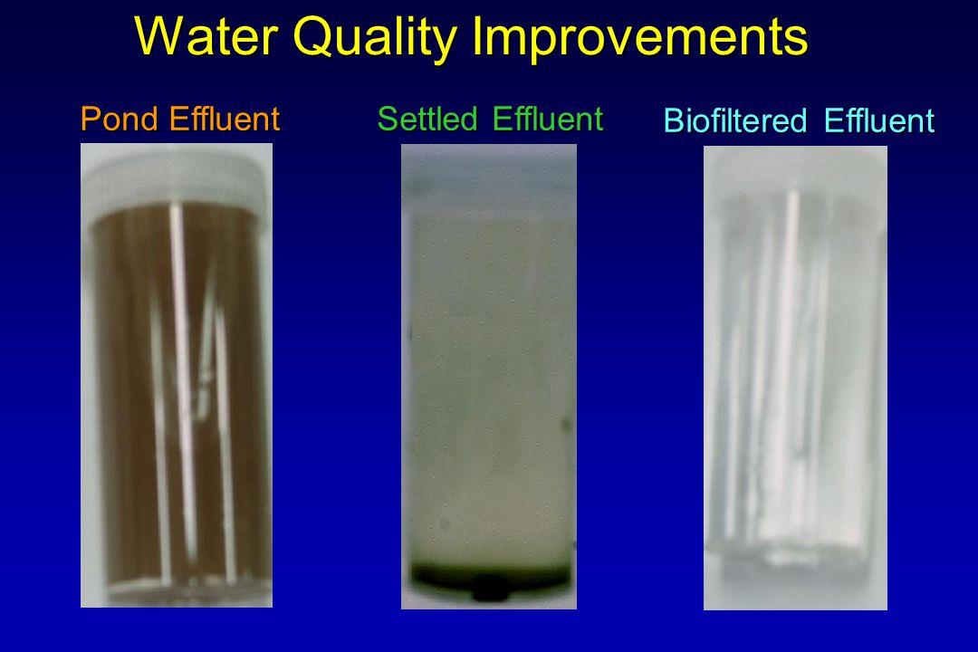Pond Effluent Settled Effluent Biofiltered Effluent