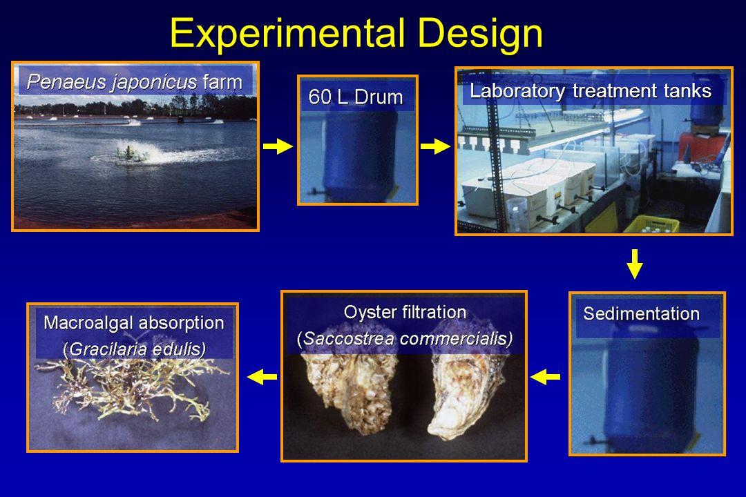 Experimental Design Laboratory treatment tanks
