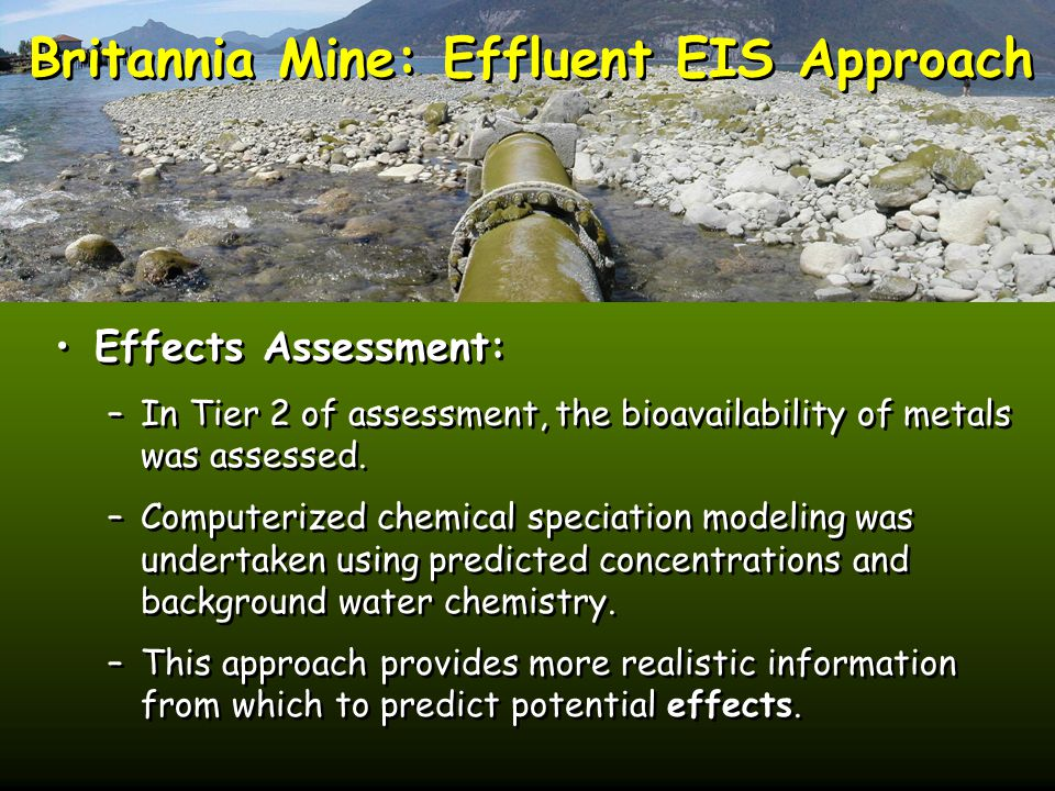 Britannia Mine: Effluent EIS Approach Effects Assessment: –In Tier 2 of assessment, the bioavailability of metals was assessed.