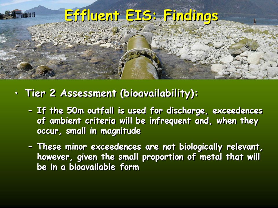 Effluent EIS: Findings Tier 2 Assessment (bioavailability): –If the 50m outfall is used for discharge, exceedences of ambient criteria will be infrequent and, when they occur, small in magnitude –These minor exceedences are not biologically relevant, however, given the small proportion of metal that will be in a bioavailable form Tier 2 Assessment (bioavailability): –If the 50m outfall is used for discharge, exceedences of ambient criteria will be infrequent and, when they occur, small in magnitude –These minor exceedences are not biologically relevant, however, given the small proportion of metal that will be in a bioavailable form
