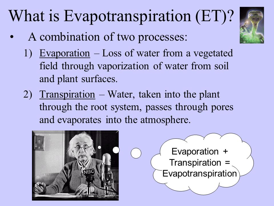 What is Evapotranspiration (ET).