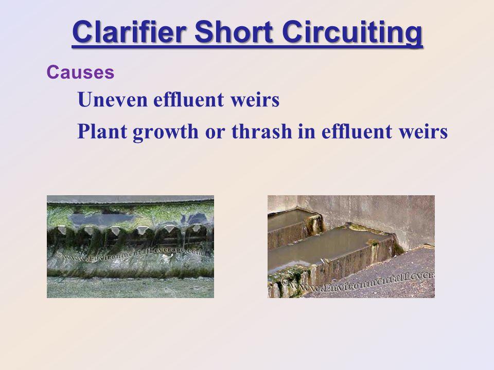Clarifier Short Circuiting Uneven effluent weirs Plant growth or thrash in effluent weirs Causes