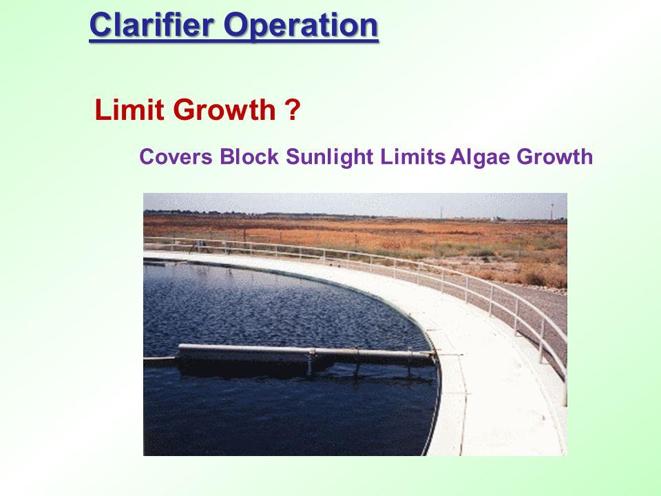 Clarifier Operation Limit Growth ? Covers Block Sunlight Limits Algae Growth