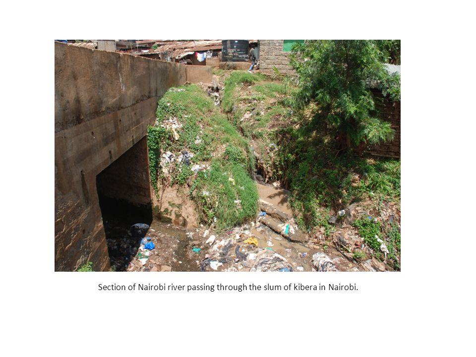 Section of Nairobi river passing through the slum of kibera in Nairobi.