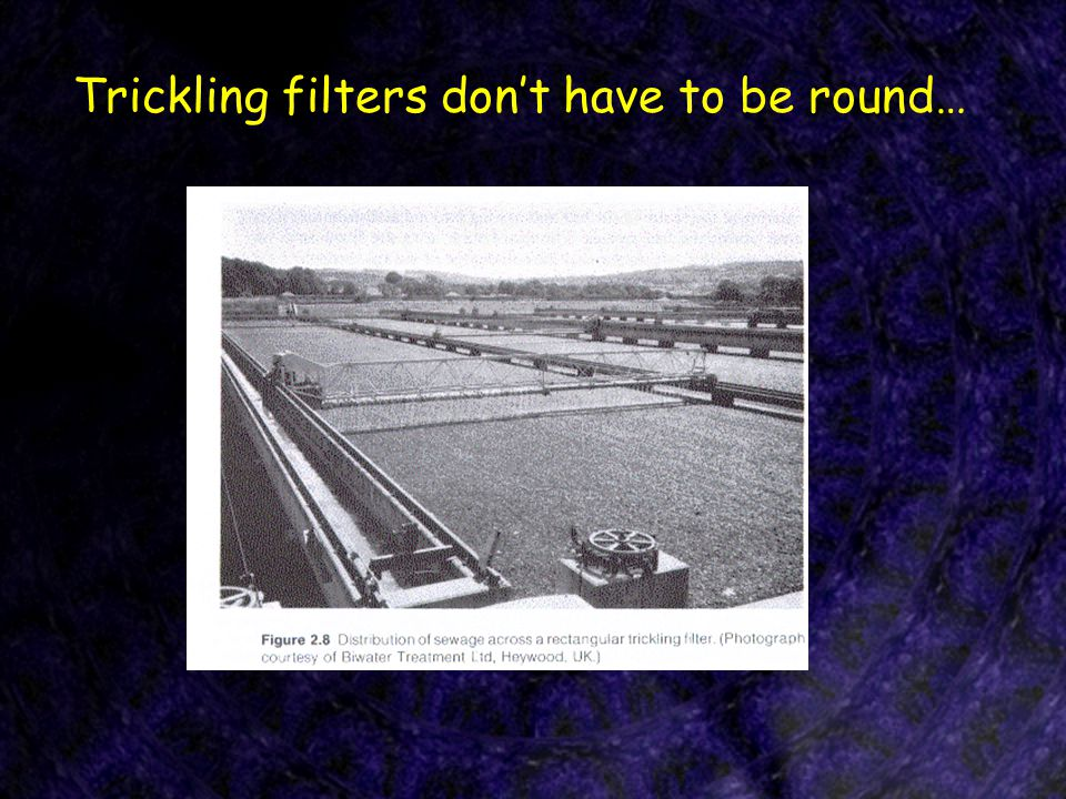 Trickling filters don't have to be round…