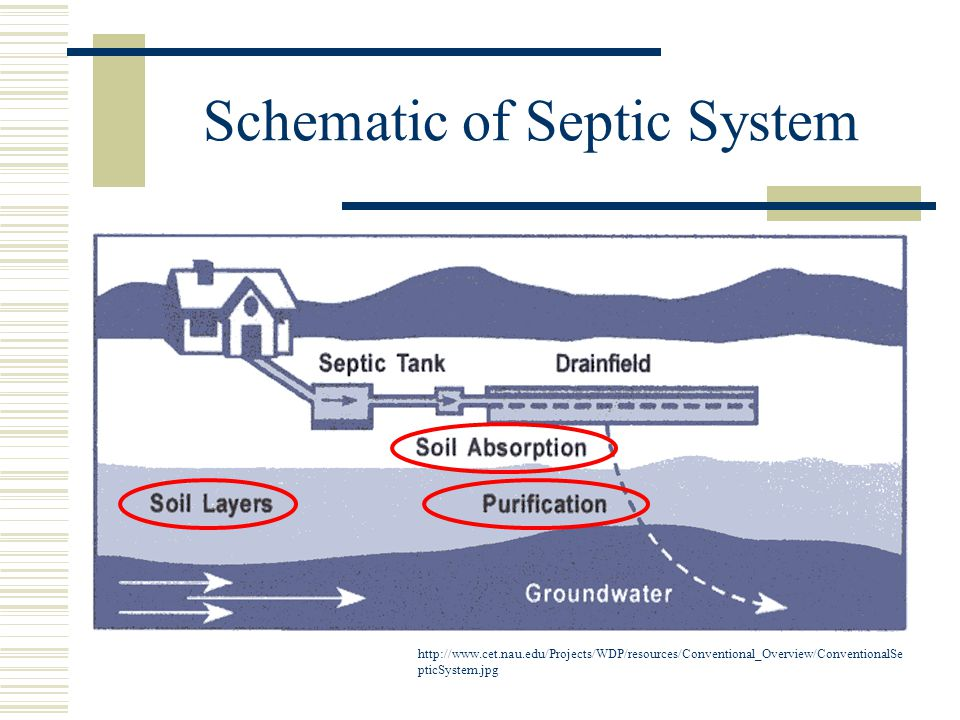 Schematic of Septic System http://www.cet.nau.edu/Projects/WDP/resources/Conventional_Overview/ConventionalSe pticSystem.jpg