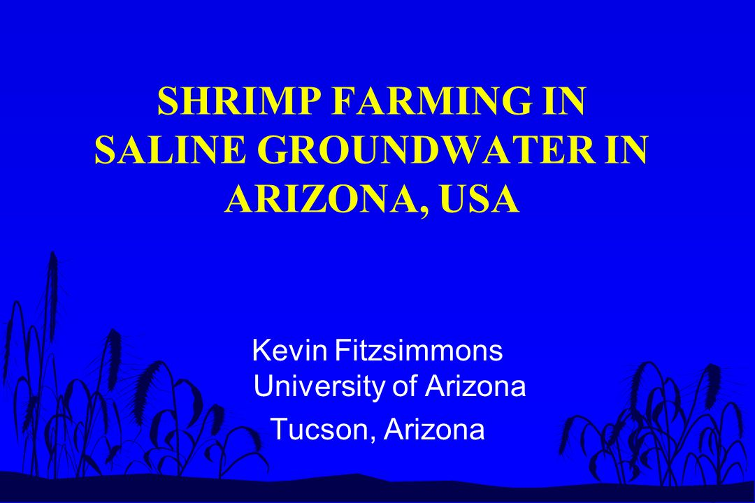 ABSTRACT n Environmental restrictions on shrimp aquaculture.