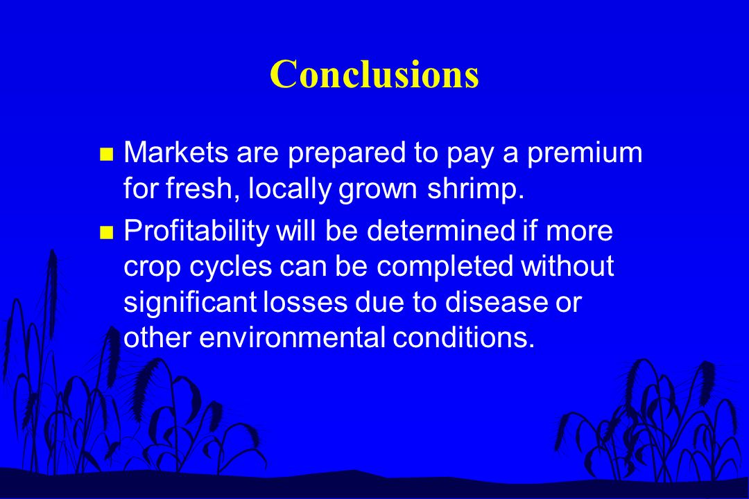 Conclusions n Markets are prepared to pay a premium for fresh, locally grown shrimp. n Profitability will be determined if more crop cycles can be com