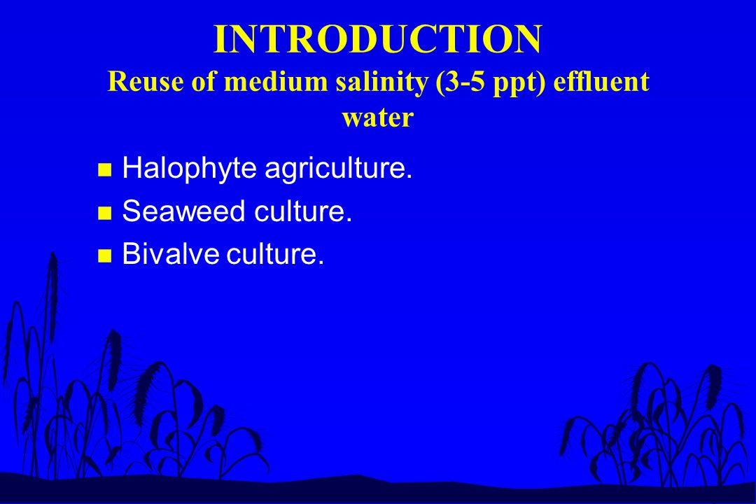 INTRODUCTION Halophytes n Many families of plants have halophytic representatives.