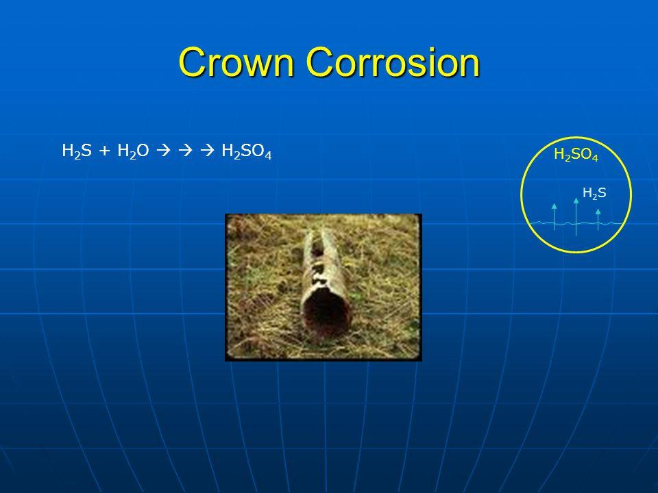Crown Corrosion H 2 S + H 2 O    H 2 SO 4 H2SH2S H 2 SO 4