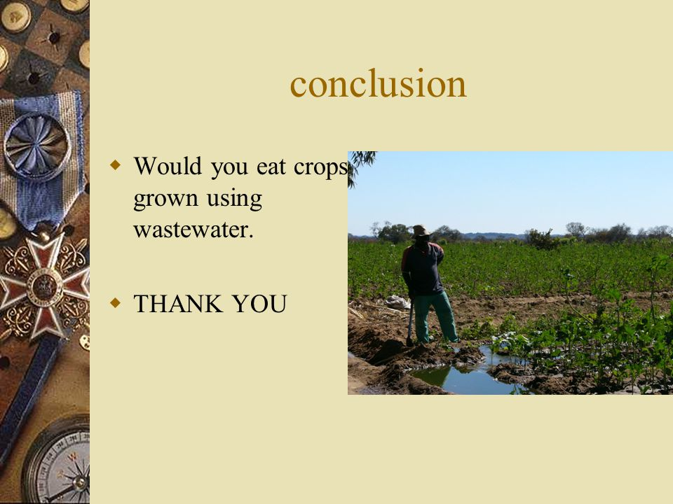 conclusion  Would you eat crops grown using wastewater.  THANK YOU