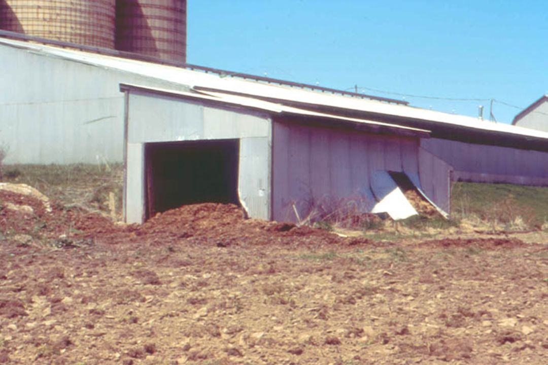 Vegetated filter strip to treat BOTH: barnyard runoff and milkhouse wastewater