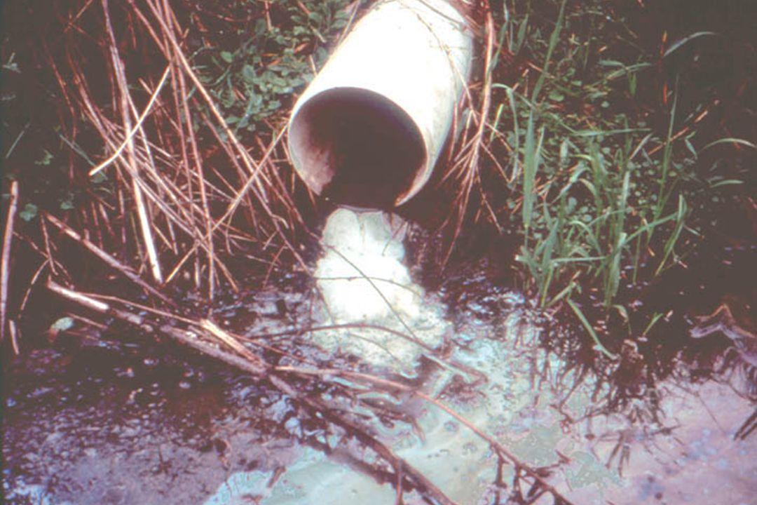 Milking Center Waste Estimated Nitrogen Fate Immobilized Soil OM 21% Denitrified30% Crop Uptake32% Leaching17% Total100%