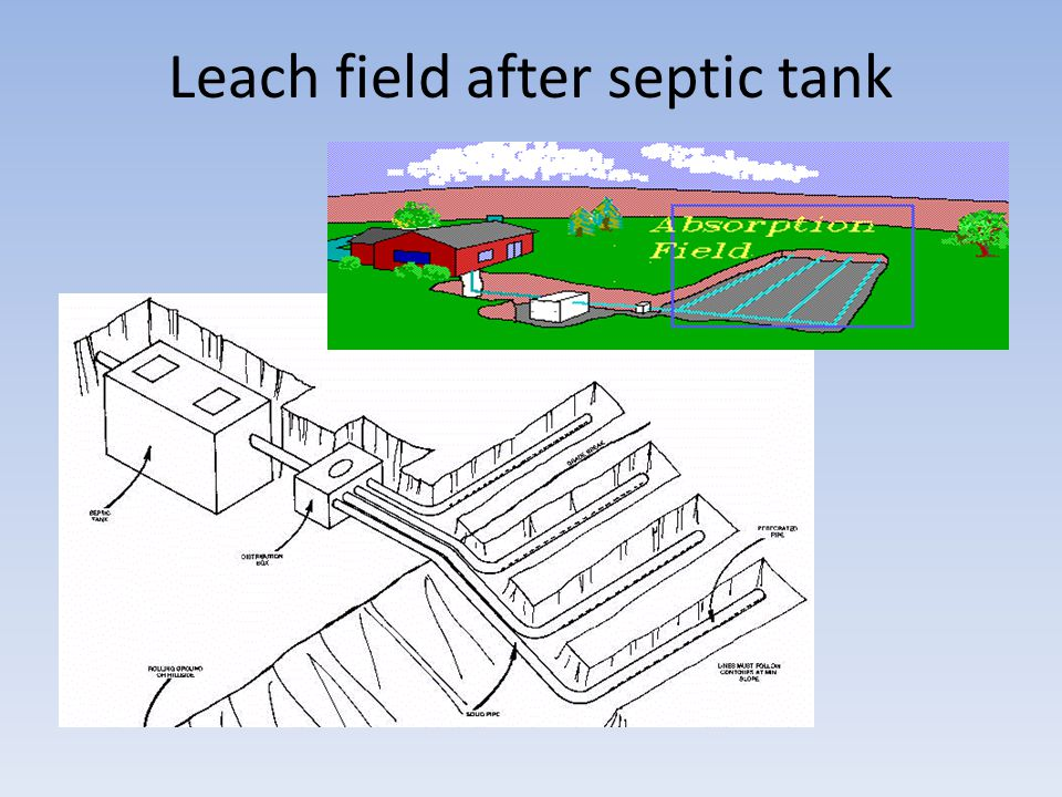 Leach field after septic tank
