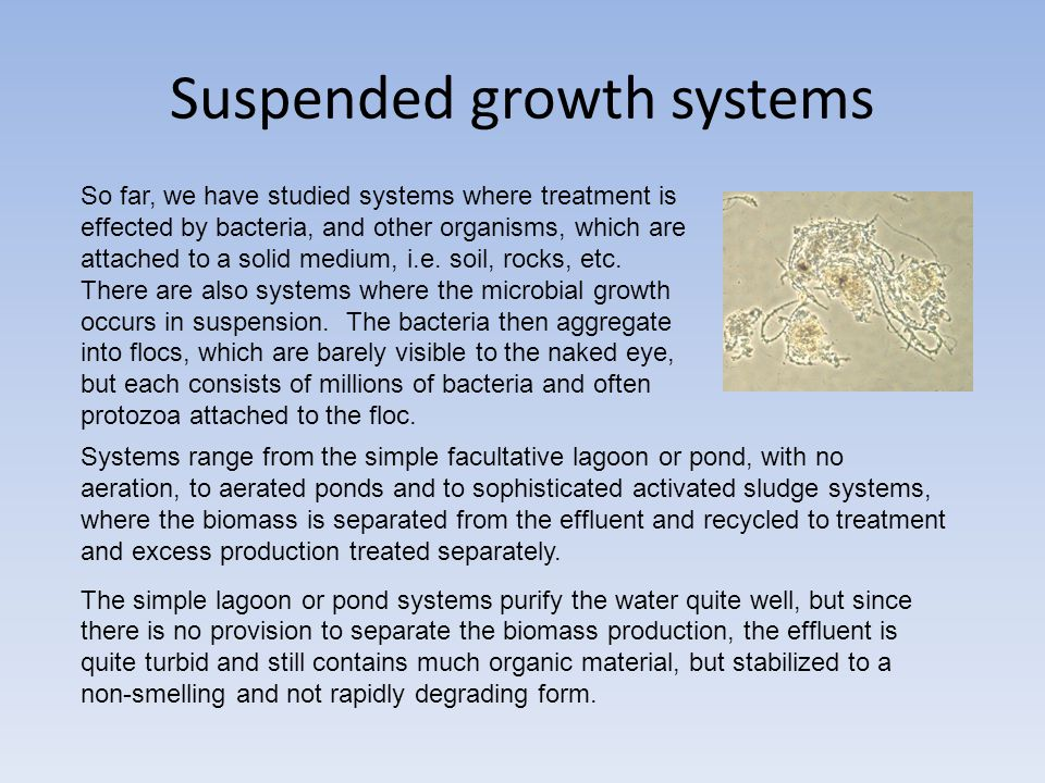 Suspended growth systems So far, we have studied systems where treatment is effected by bacteria, and other organisms, which are attached to a solid medium, i.e.