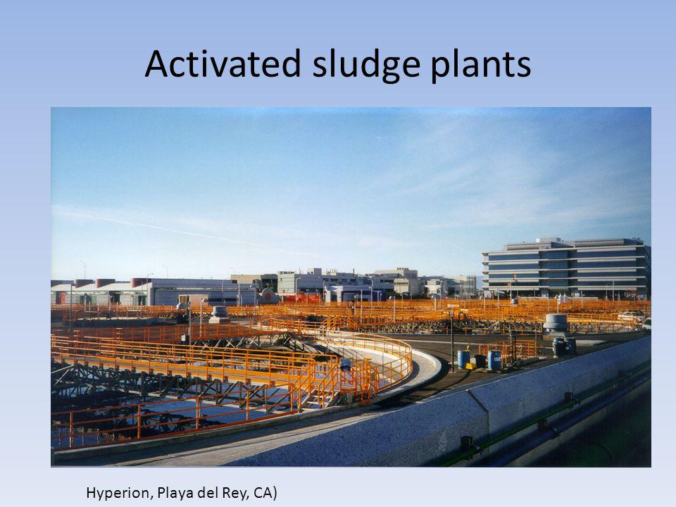 Activated sludge plants Hyperion, Playa del Rey, CA)