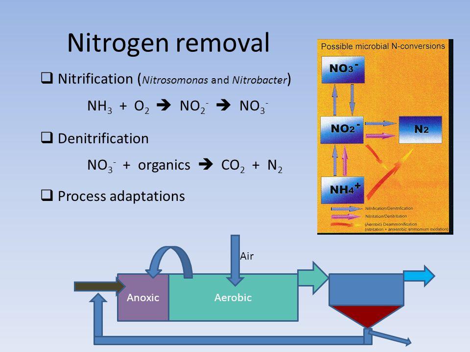 Nitrogen removal  Nitrification ( Nitrosomonas and Nitrobacter ) NH 3 + O 2  NO 2 -  NO 3 -  Denitrification NO 3 - + organics  CO 2 + N 2  Proc