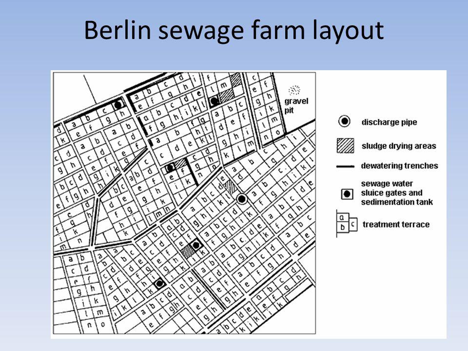 Berlin sewage farm layout