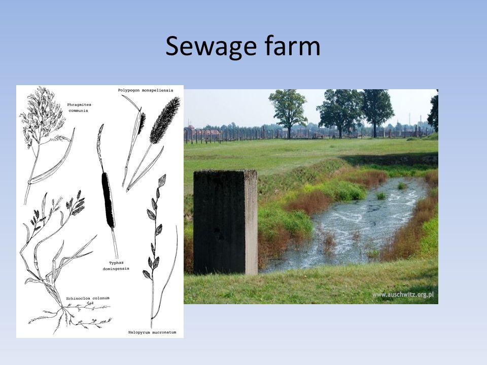 Overland flow designs