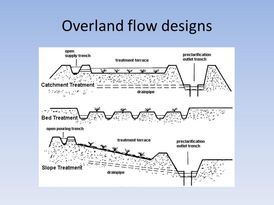 Activated sludge flocs Note filamentous bacteria Note Vorticella and other protozoa