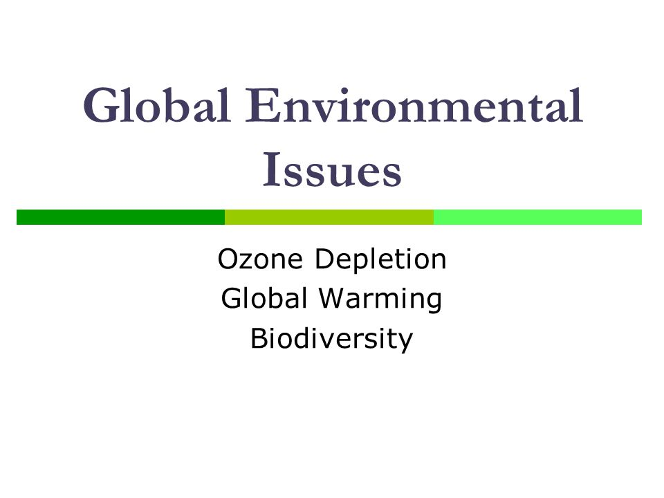 Global Environmental Issues Ozone Depletion Global Warming Biodiversity