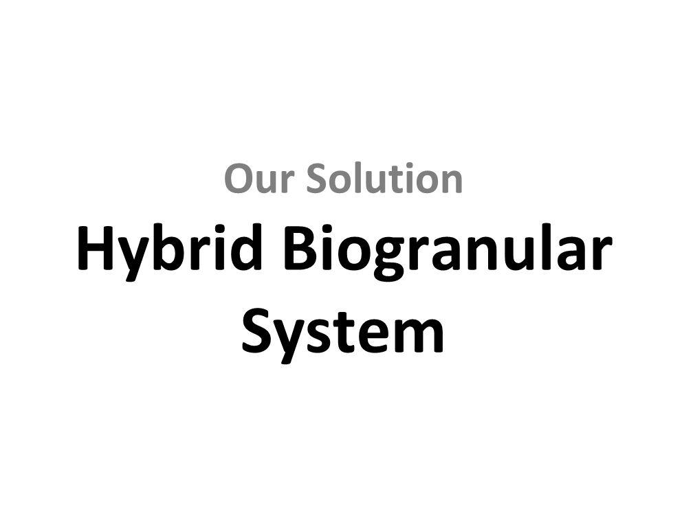 Our Solution Hybrid Biogranular System